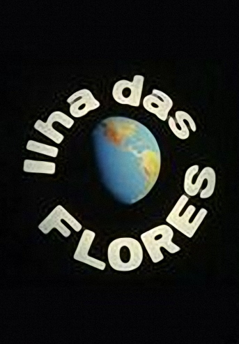ilhadasfloresed8